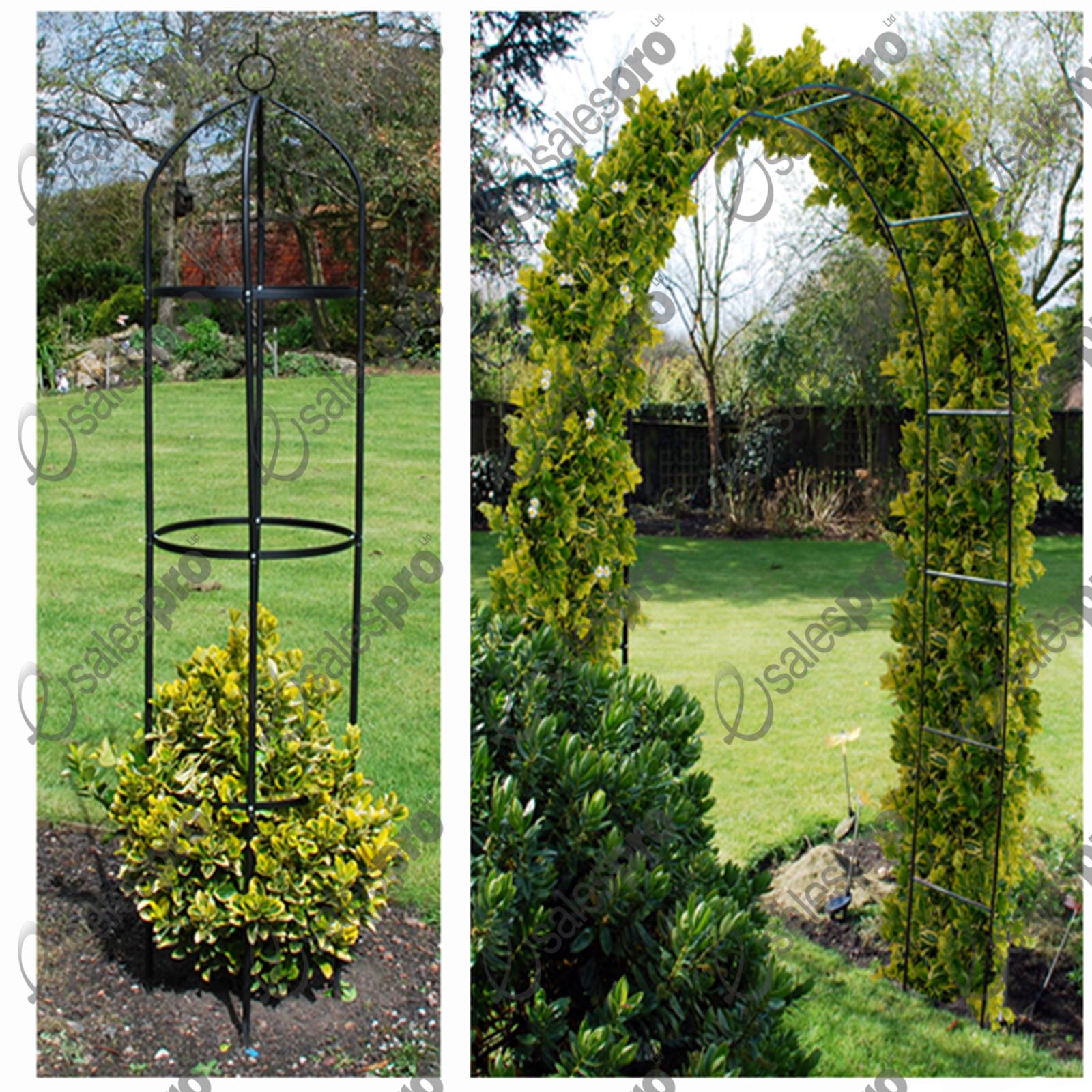 Garden Arch & Obelisk Trellis Feature Climbing Plant Roses