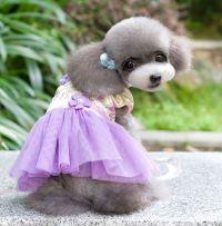 Fleece Chinese Costume Cheongsam Dress Lace Skirt Small ...