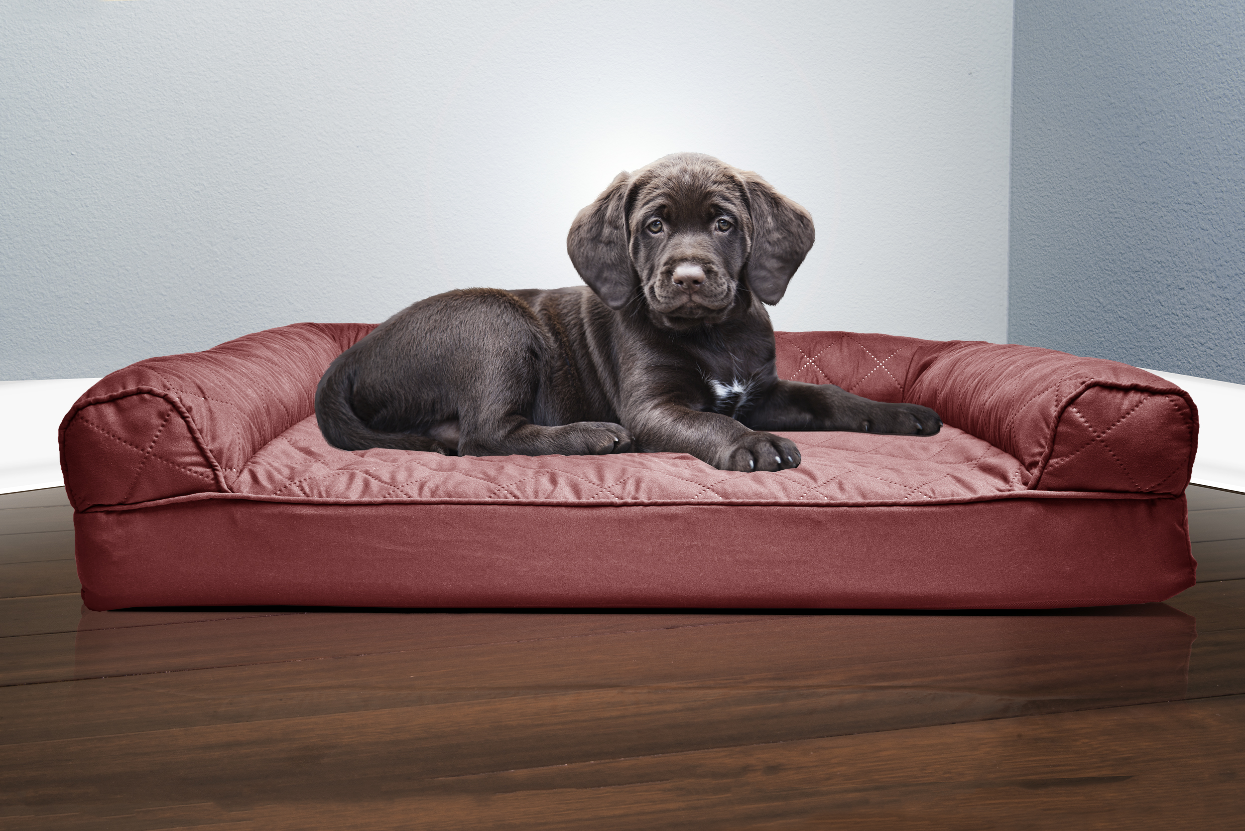 orthopedic sofa best way to clean a fabric uk furhaven quilted dog bed pet ebay