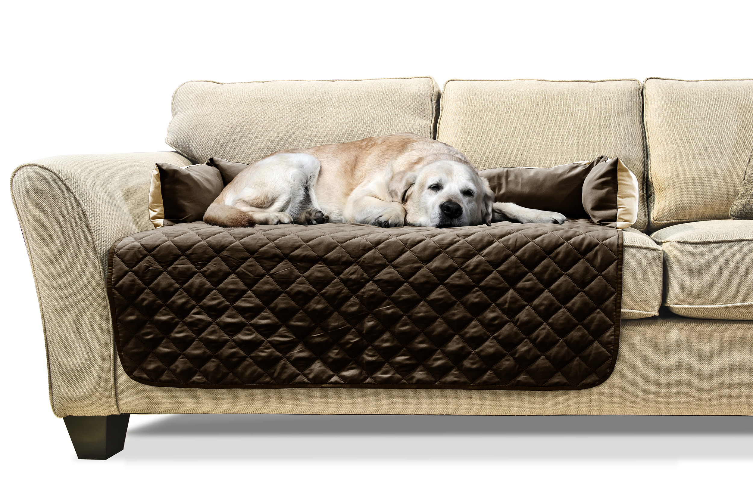pet bed sofa cover denim and loveseat furhaven buddy furniture ebay