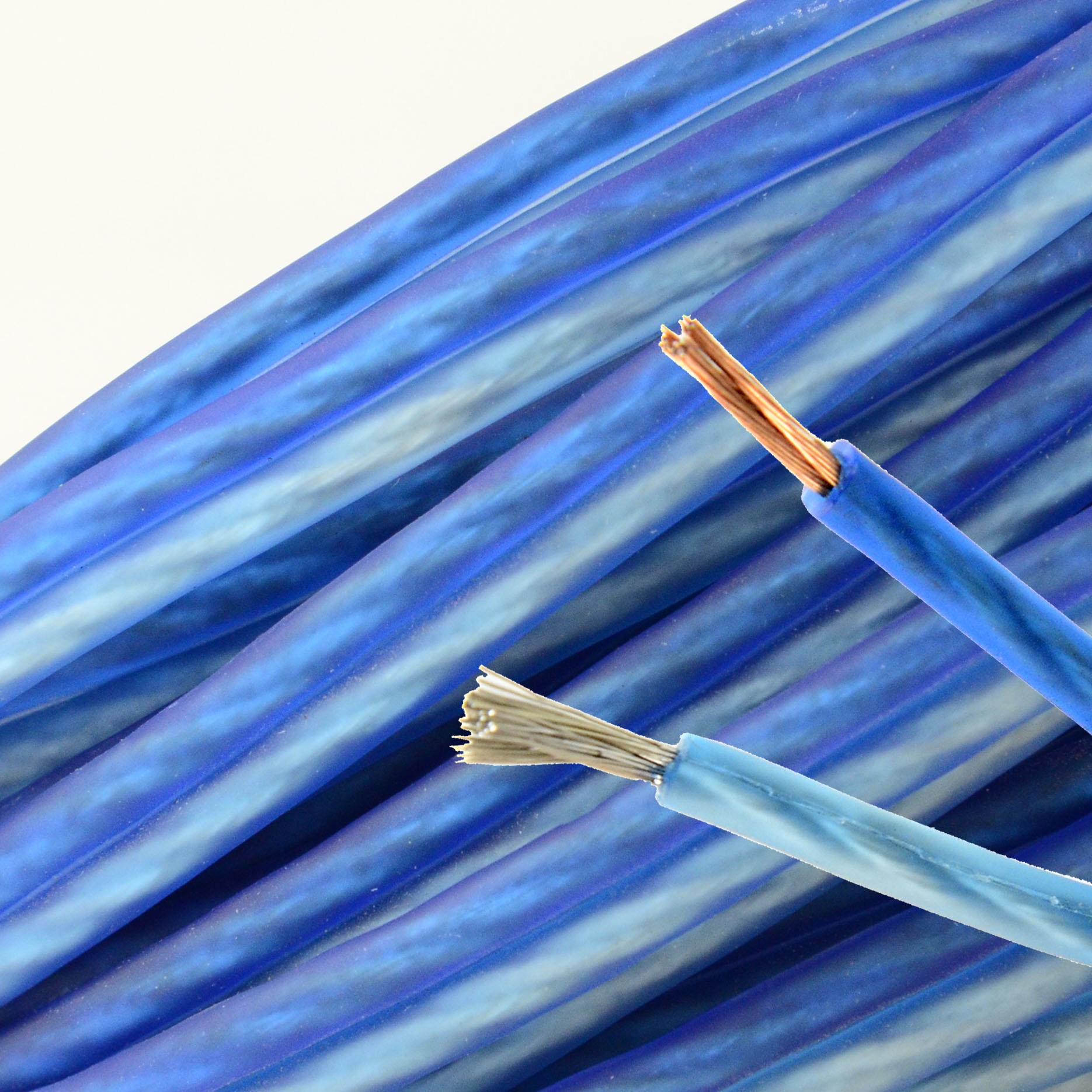 hight resolution of details about 10 ft 14 gauge speaker wire professional series blue bullz audio car home