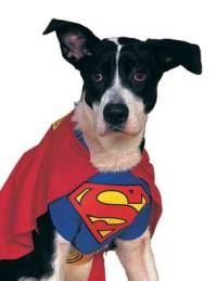 Superman Pet Comic Superhero Cape Dog Halloween Costume | eBay
