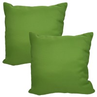 Set of 2 Throw Pillows Indoor/Outdoor Couch Furniture ...