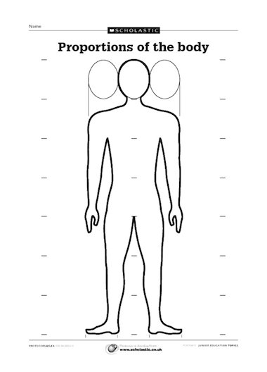 Proportions of the body