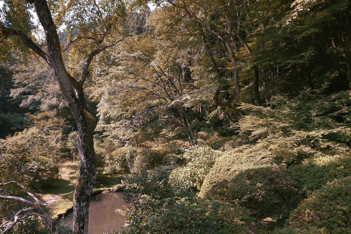 Le centre communautaire repose sur les rives de la rivière Yoshino.