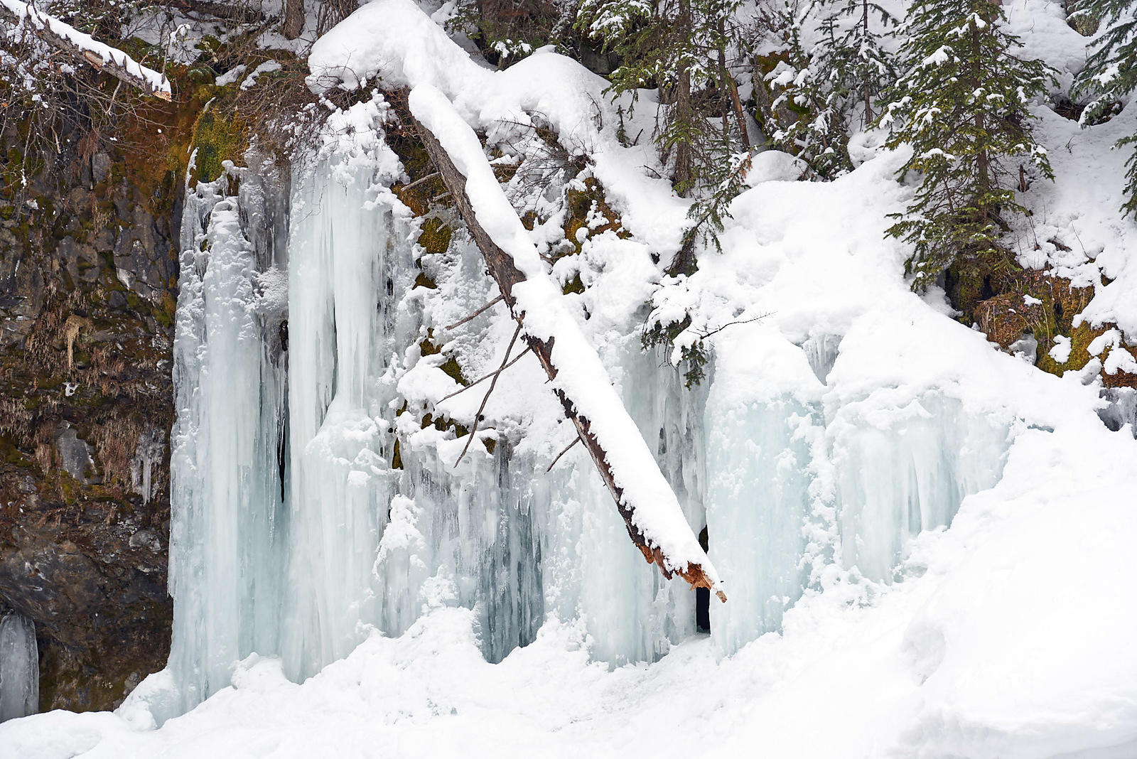The museum of the rockies is always a good winter indoor activity. D Ardenne Photography Grotto Falls Winter