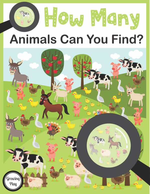 How Many Animals Can You Find Visual Discrimination