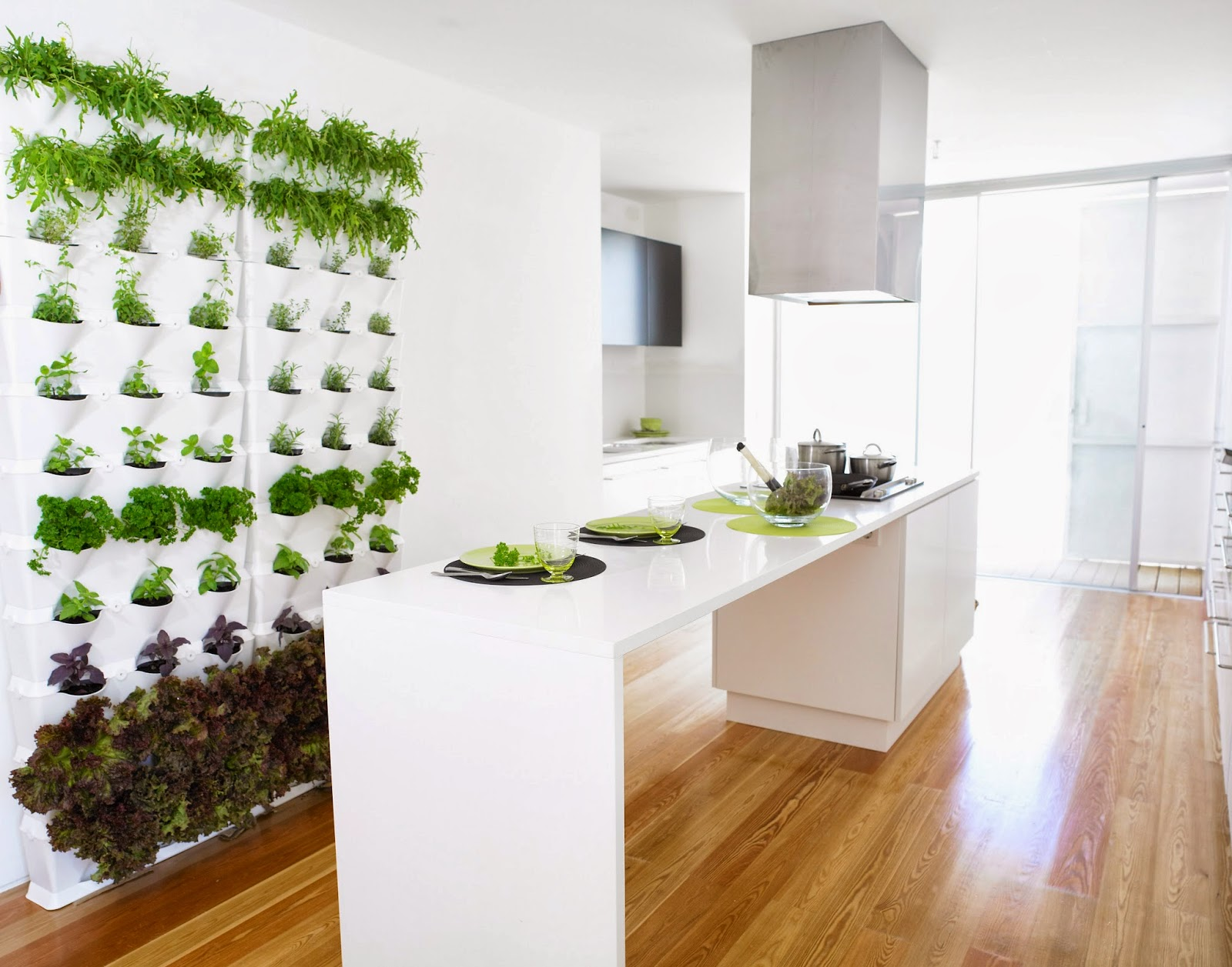 kitchen green wall