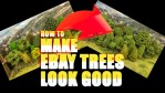 How to make eBay trees look Good