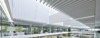 Solo Baffle - Commercial Ceilings - CertainTeed