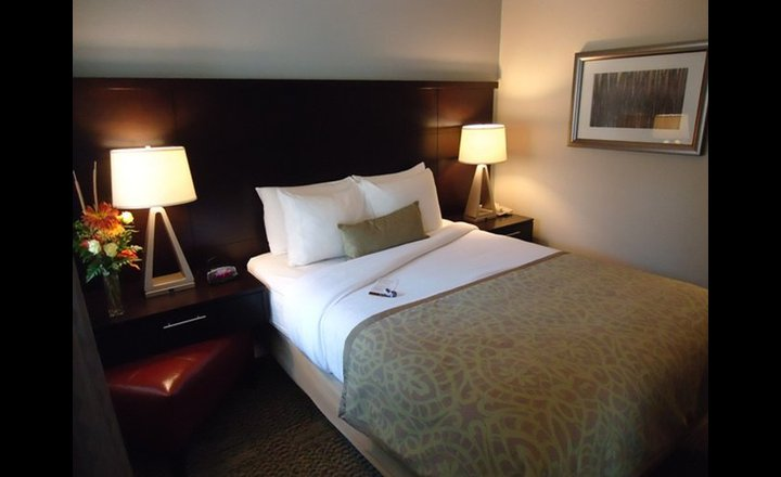 Staybridge Suites Herndon Dulles Hotel United States Of