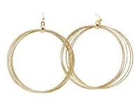 Gold Ring Loop Earrings