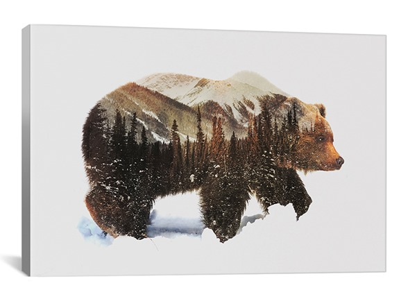 Free Shipping Grizzly