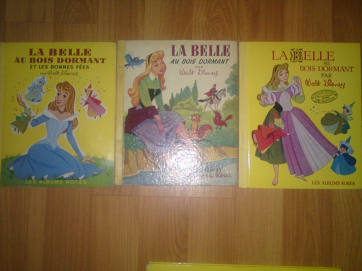 Disney Sleeping Beauty Books From France Collectors Weekly