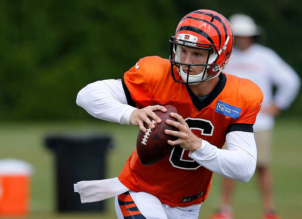 inkl - Bengals waive QB Jeff Driskel - USA Today Sports Media Group