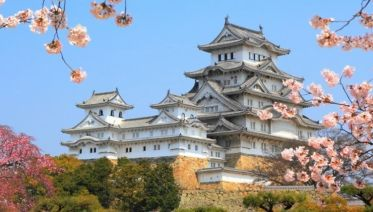 10 Best Japan Tours And Vacation Packages 2020 2021 With 485 Reviews Bookmundi