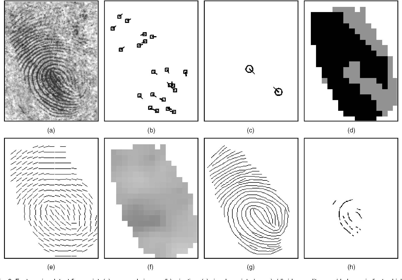 Figure 1 From Latent Fingerprint Matching
