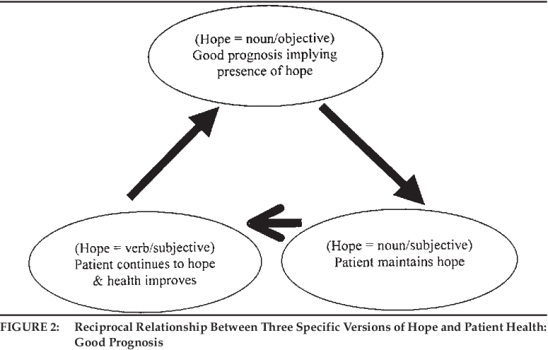 """The Discursive Properties of """"Hope"""": A Qualitative Analysis of Cancer  Patients' Speech   Semantic Scholar"""