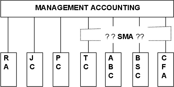 [PDF] Strategic management accounting constructions in
