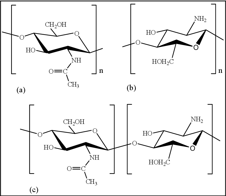 Table 5 from Synthesis of permanent non-leaching