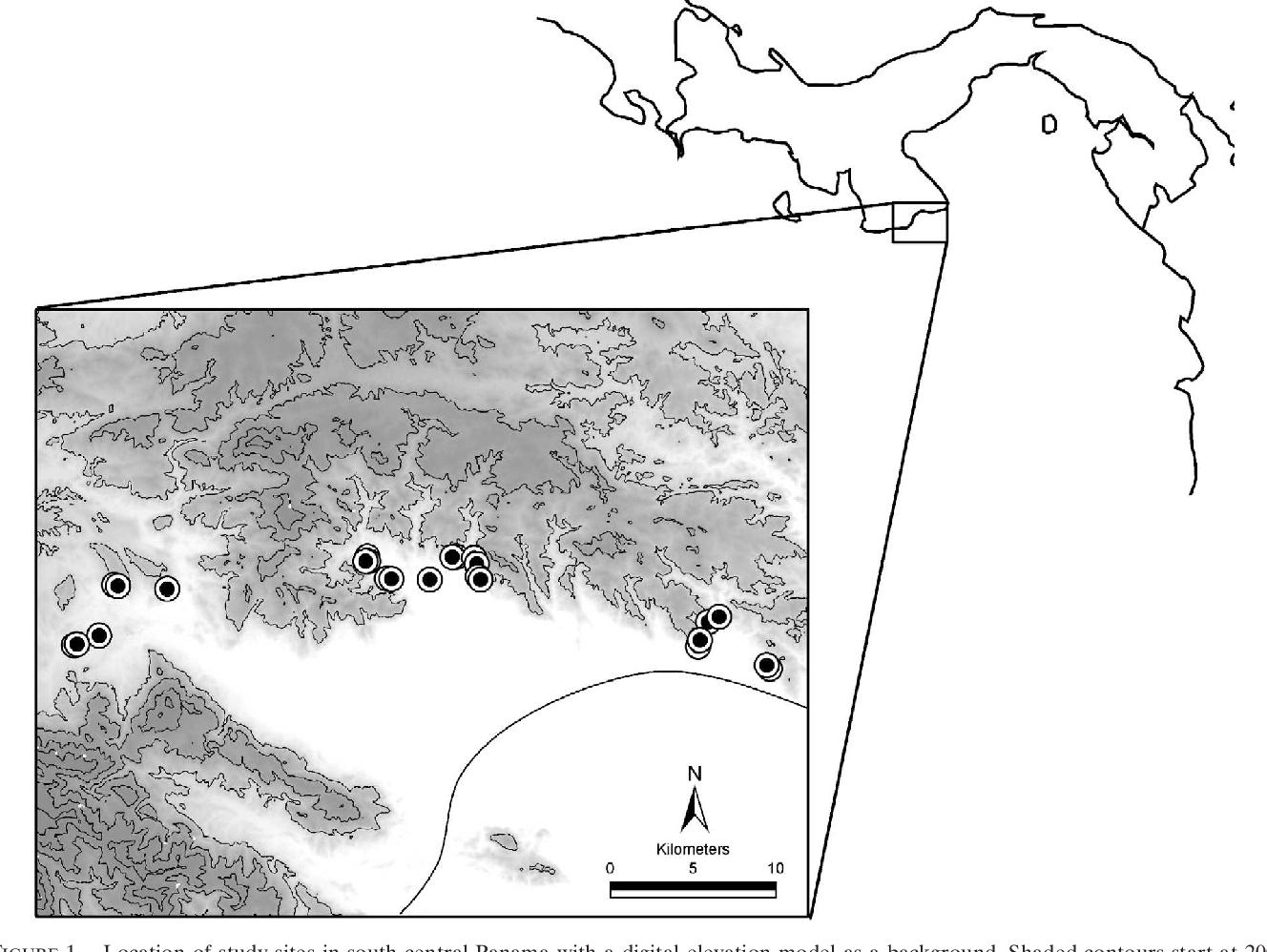 PDF] Modeling hantavirus reservoir species dominance in high ...
