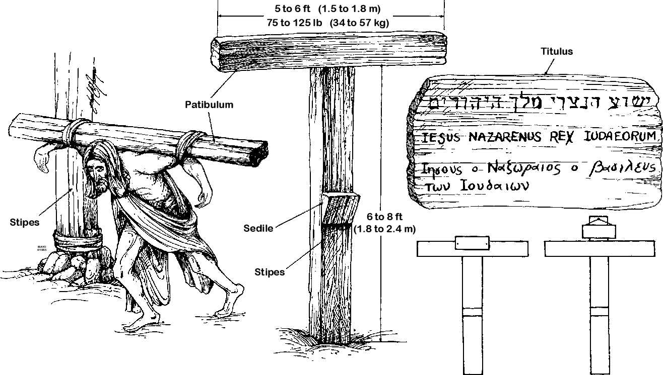 Figure 7 from On the physical death of Jesus Christ