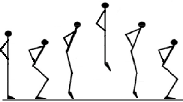 Figure 1 from Stretch-Shortening Cycle in Countermovement