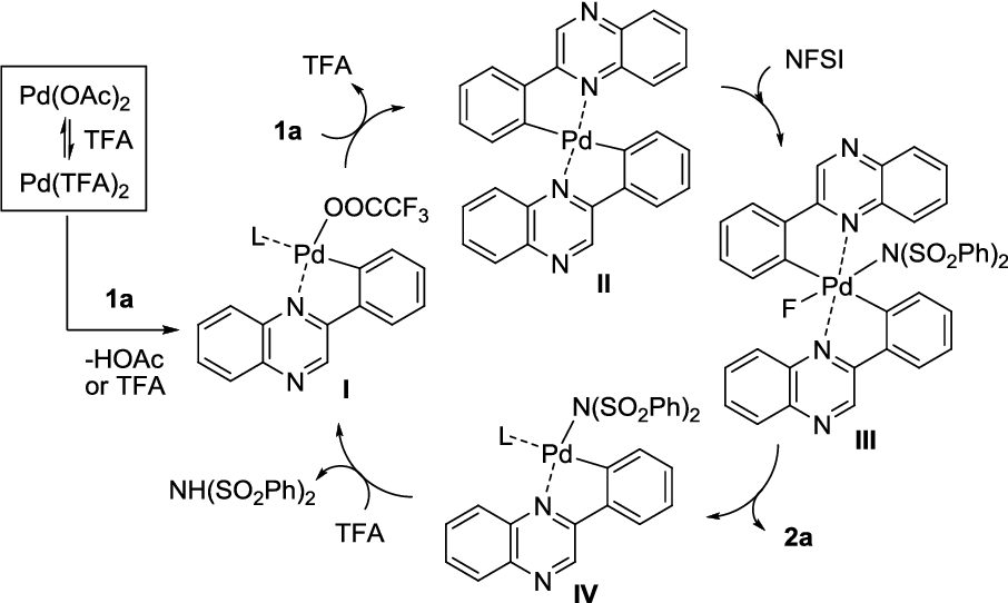 Table 1 from Pd(OAc)2-catalyzed regioselective aromatic C