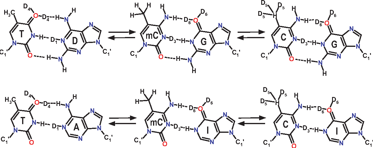 Table 2 from Role of stacking interactions in the binding