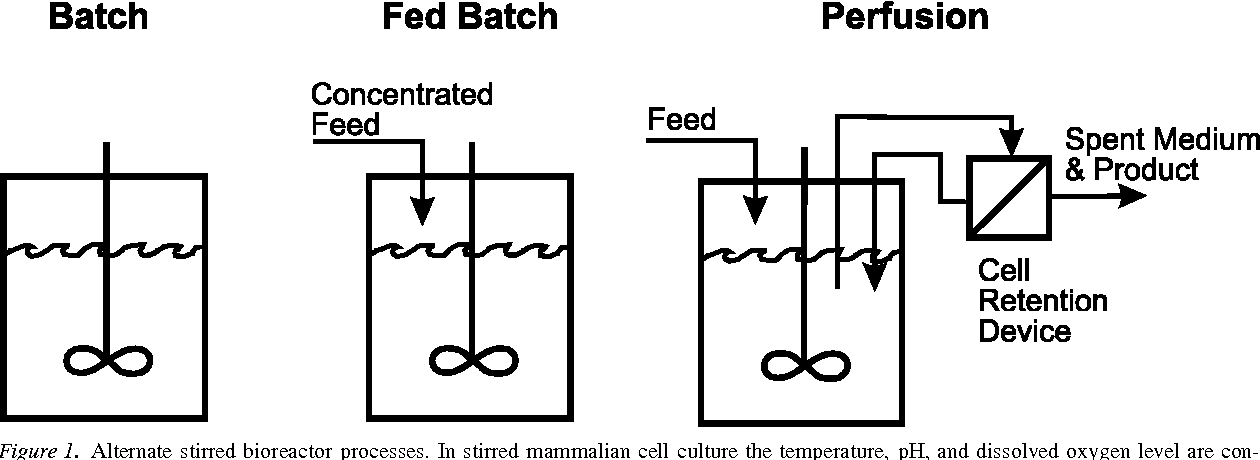 Figure 1 from Mammalian cell retention devices for stirred
