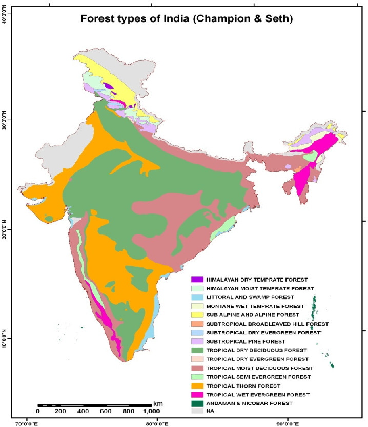 The provisions of indian forest act or the state forest. Changes In Distribution Of Carbon In Various Forest Types Of India From 1995 2005 Semantic Scholar