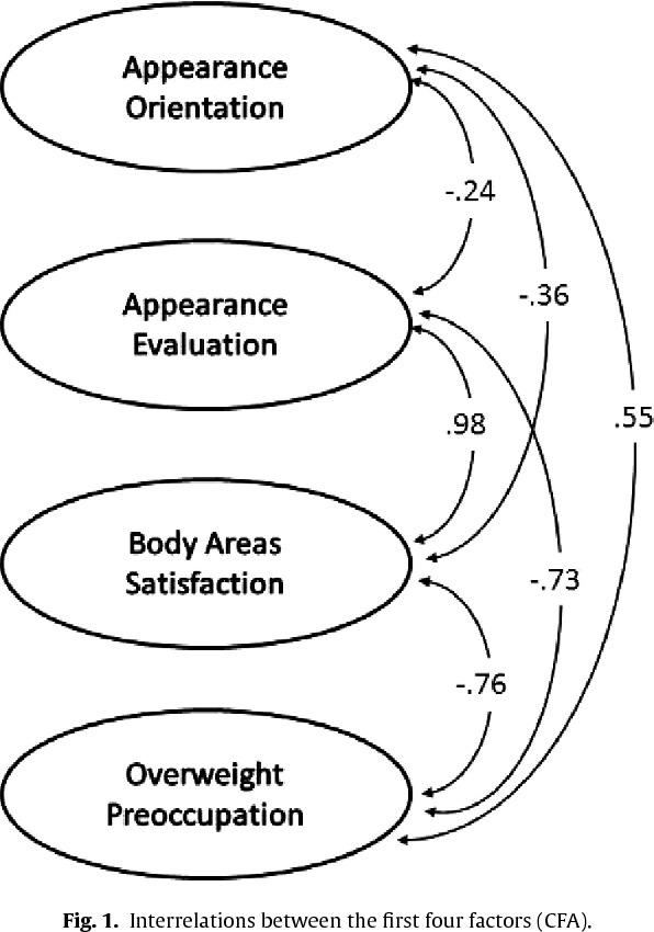 Multidimensional Body-Self Relations Questionnaire
