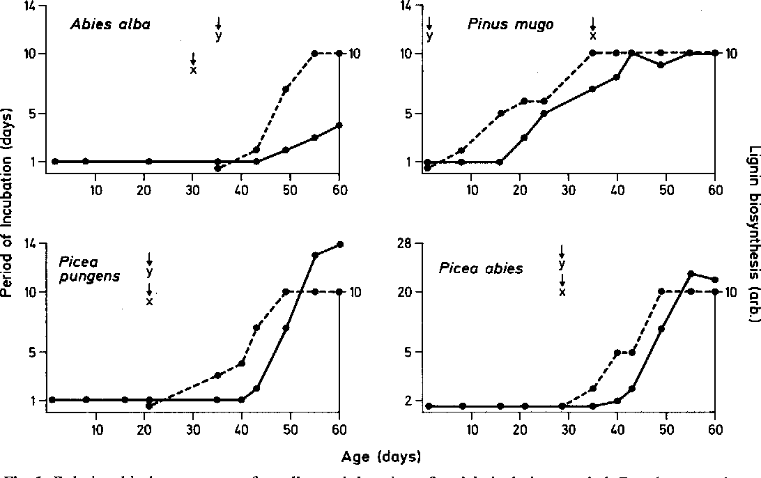 Figure 1 from Isolation of cuticular membranes from