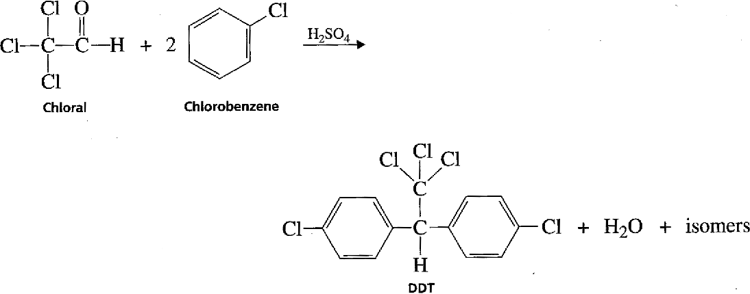 Figure 2 from Diels-Alder Reaction of Cyclopentadiene with