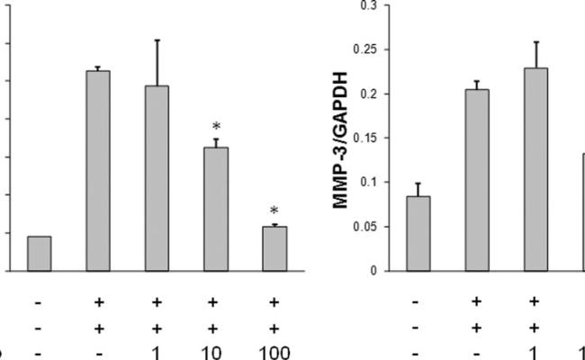 Tocilizumab A Humanized Anti Il 6r Antibody As An