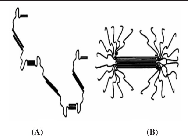 Figure 7 from Casein micelle structure: a concise review