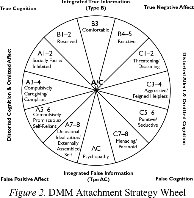 Assessing Adult Attachment Using the Dynamic Maturational