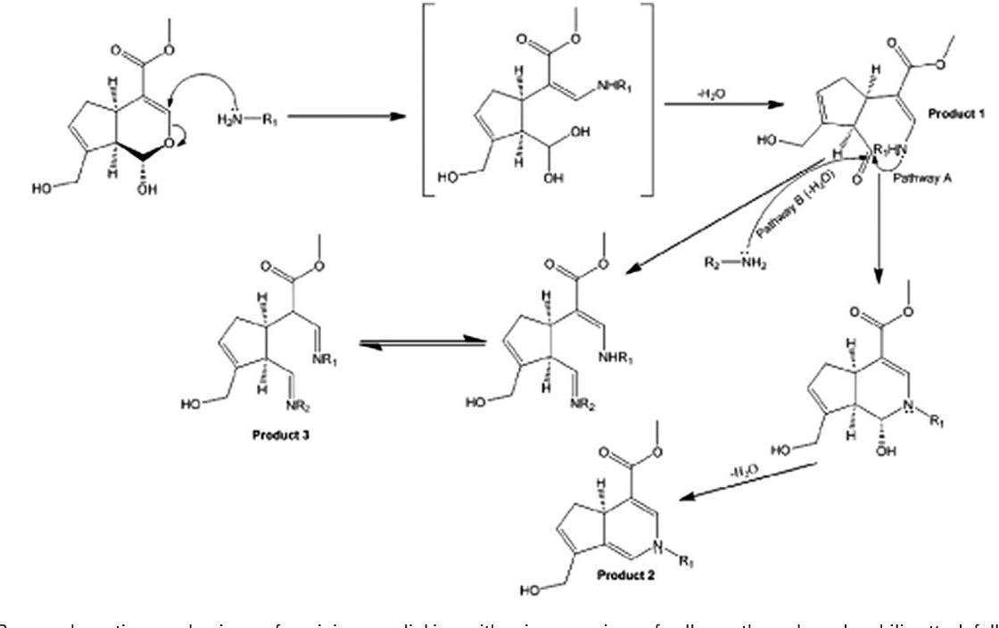 Novel genipin-collagen immobilization of polylactic acid