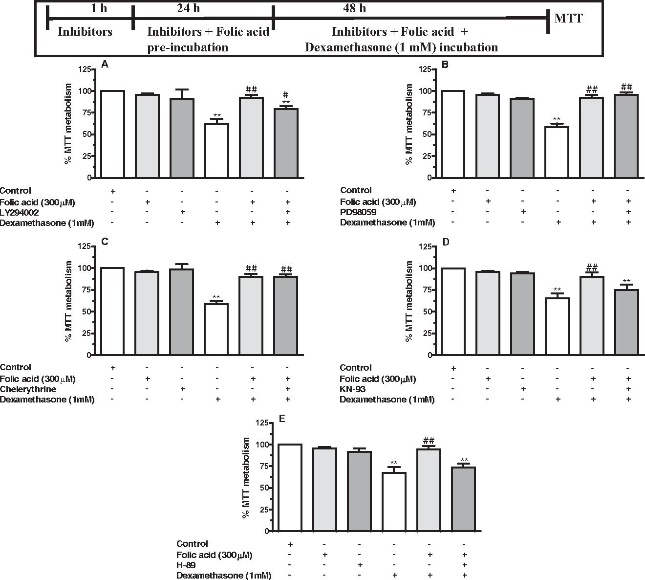 Neurotoxicity induced by dexamethasone in the human