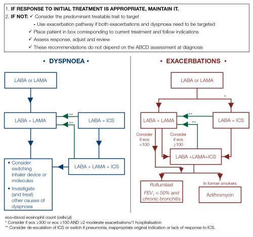 small resolution of gold copd 2019 strategy independent professional body guideline guidelines