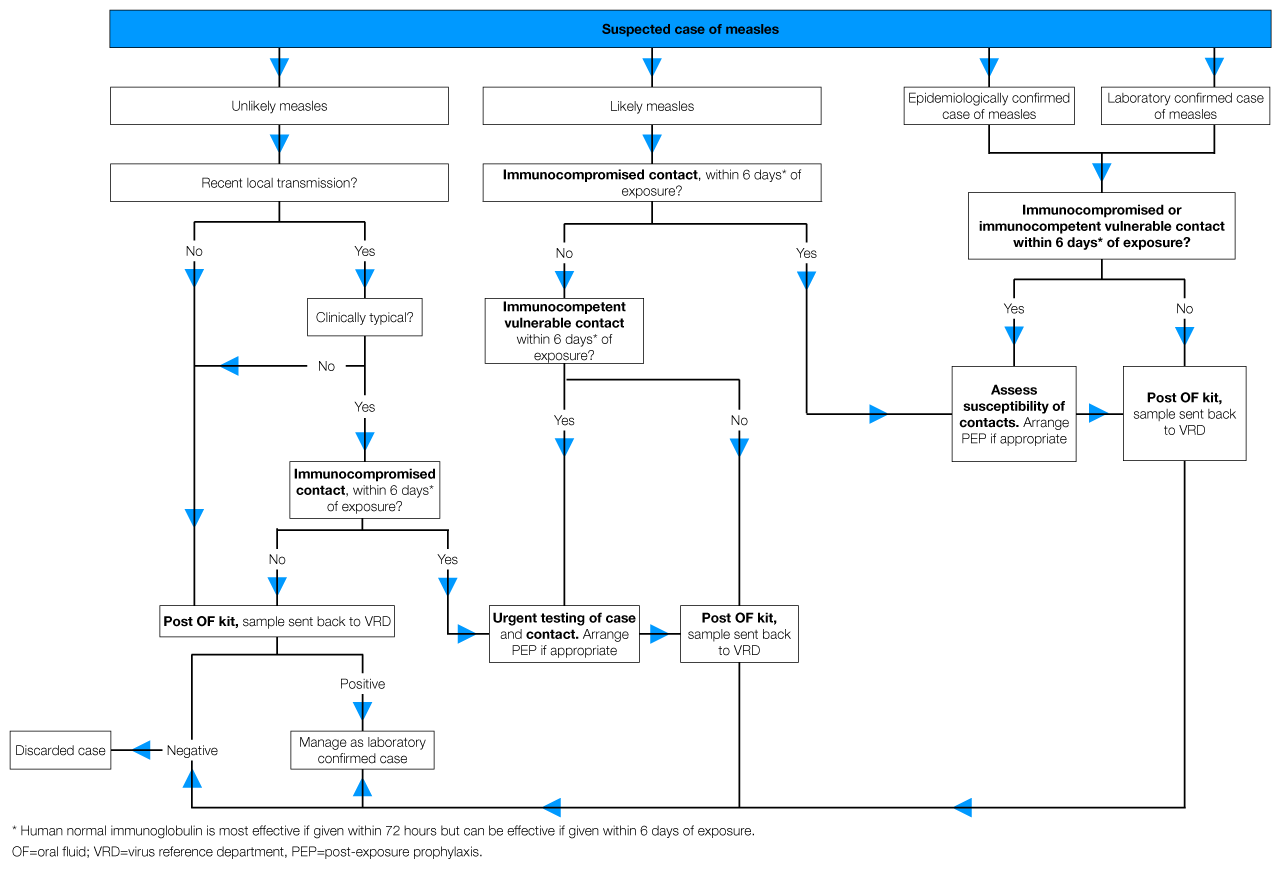 hight resolution of pathophysiology of measle diagram