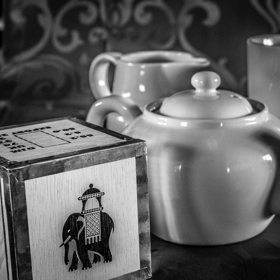Tea and the Elephant