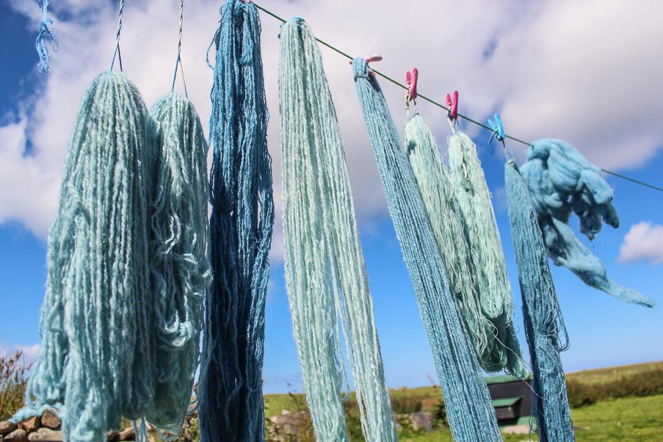 Indigo Dyeing Day