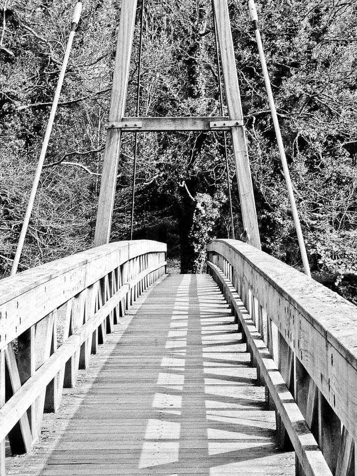 Bridge at Chatelherault (backblip)