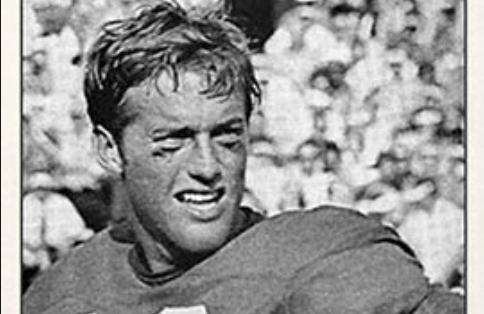 Former Razorback quarterbacks