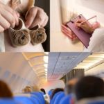 Is It Safe to Travel by Plane Whilst Pregnant? How to Travel Safely!