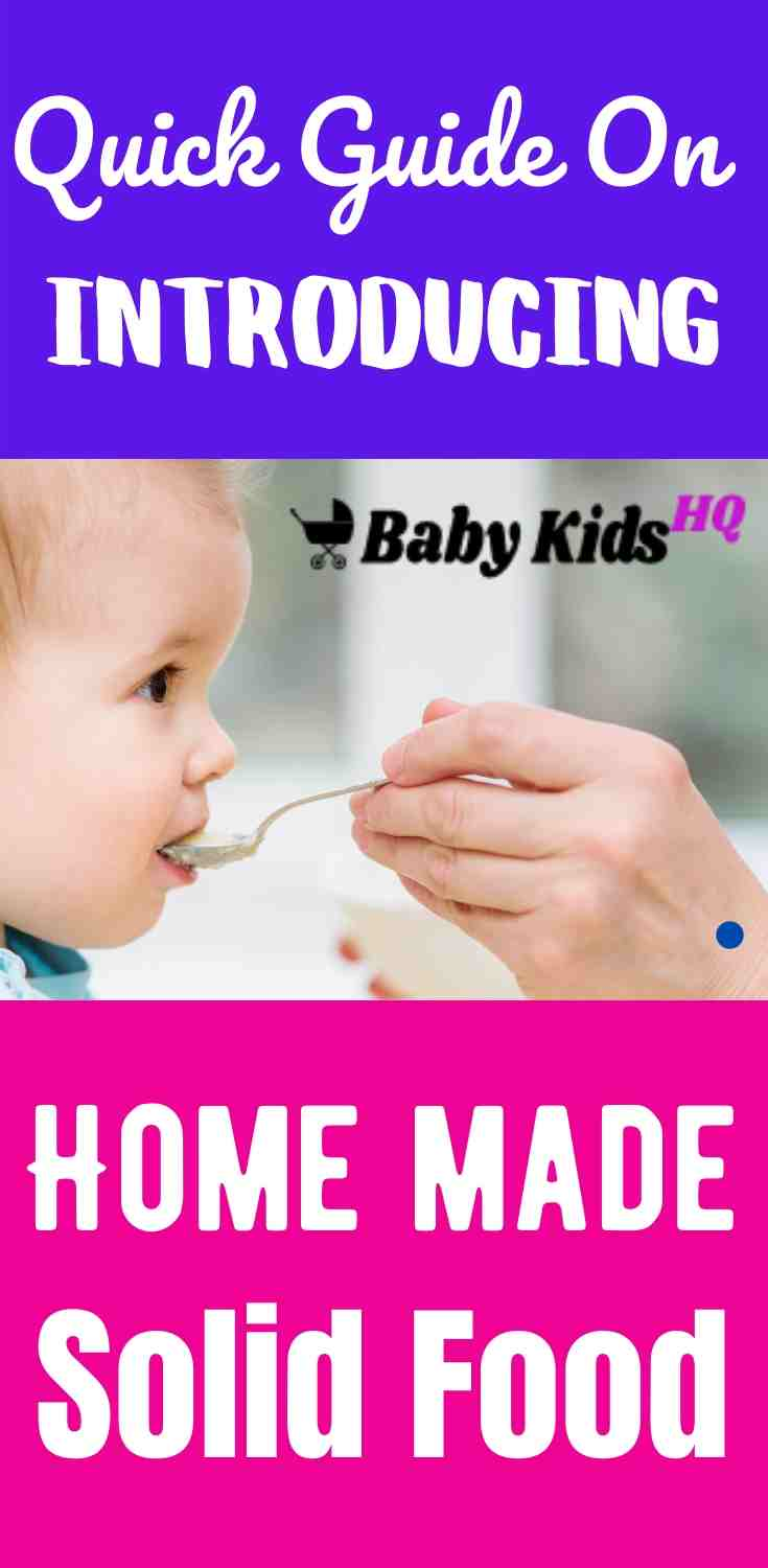 Introducing Home Made Solid Foods: A Quick Guide 1