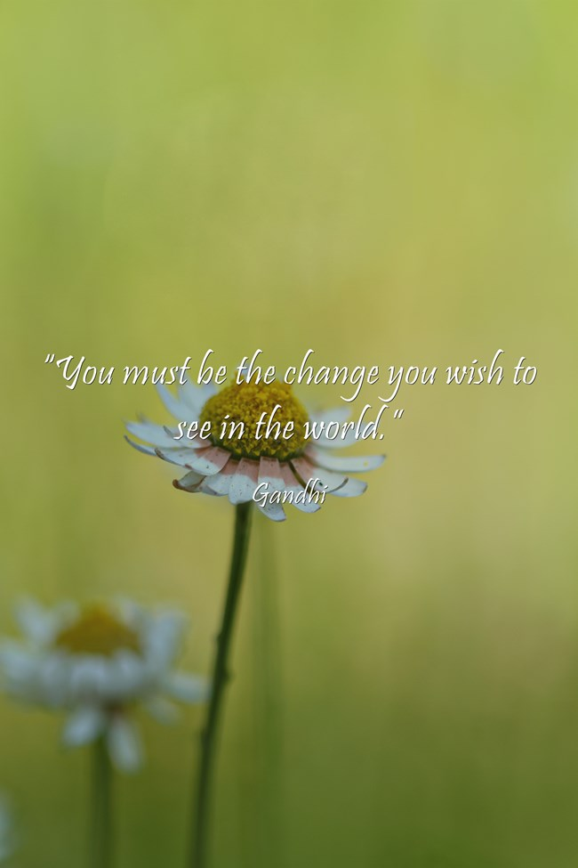 """You must be the change you wish to see in the world."" - Gandhi"