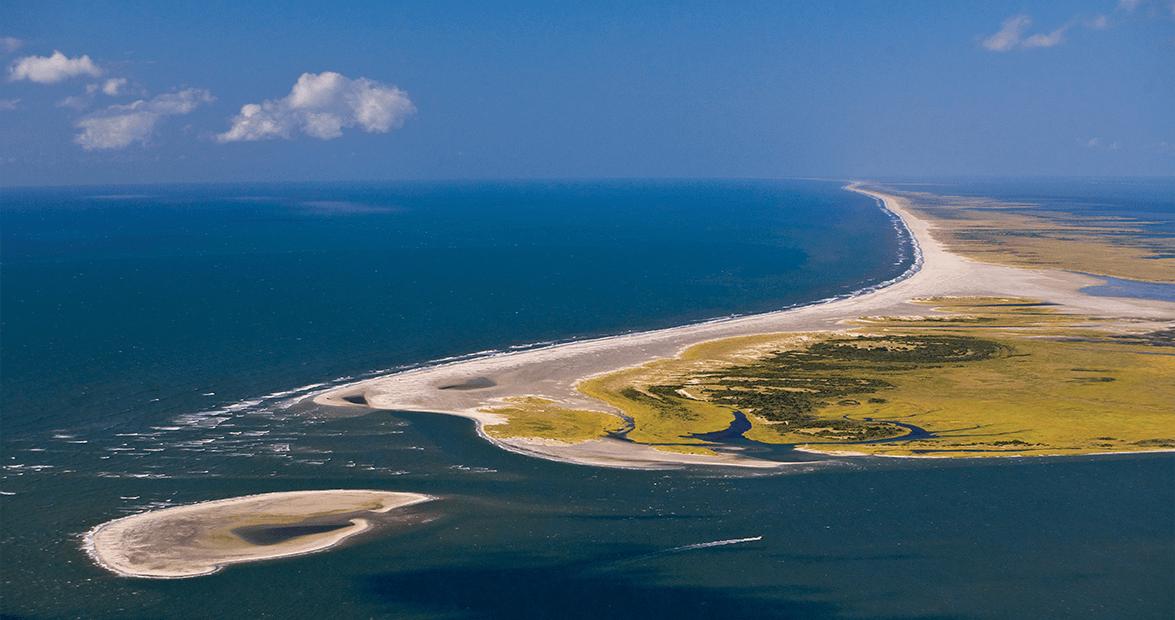Beaches Grasses Barrier Islands