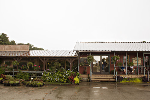 A downpour of rain welcomed us to this farm in Calabash.